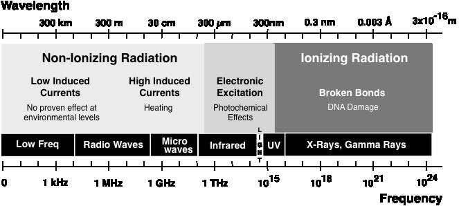 Radio Frequency Rf Biological Effects